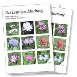 Saatguttütchen Leipziger Mischung mit Bildern der Blumen
