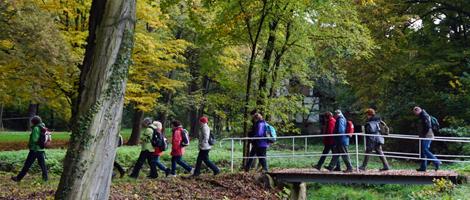 Wanderer gehen im Wald über eine Bachbrücke
