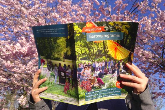 beim Lesen des Gartenprogramms vor einem Blütenmeer