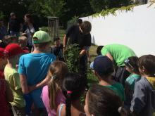 Kinder beim Pflanzen des Zuckertütenbaums