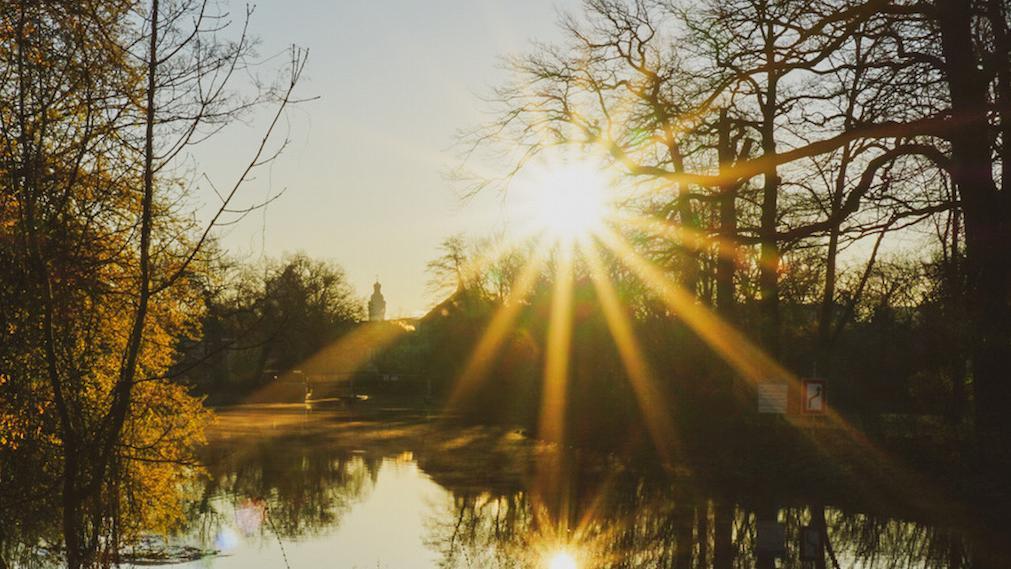 Park im Morgenlicht. Foto Antje Schade